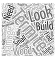 Termite Damage Word Cloud Concept vector image vector image
