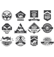 aviation badges vector image vector image