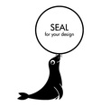 Cute cartoon seal