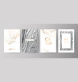 set of modern elegant brochure card background vector image