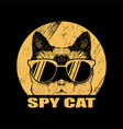 spy cat eyeglasses vector image vector image