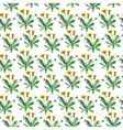 Watercolor dandelion herbs seamless pattern vector image vector image