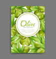 with green olives and leaf isolation vector image vector image