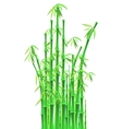 bamboo sticks over white background vector image vector image