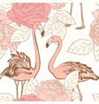 beautiful pink rose flowers pink flamingo birds vector image