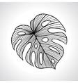 Black macro palm leaf isolated vector image