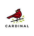 cardinal leaf line color fill logo icon vector image vector image