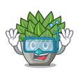 diving view of green echeveria cactus cartoon vector image