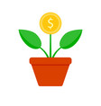 growth finance coin tree vector image