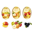 labels with fruit vector image vector image