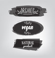 labels with vegetarian and raw food diet designs vector image