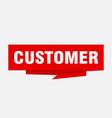 customer vector image vector image