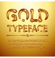 gold typeface vector image vector image