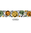 ink hand drawn citrus fruits banner design lemons vector image vector image