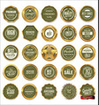 quality gold and green labels vector image vector image
