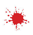 red paint or blood splash vector image vector image