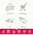 shopping cart price tag and sale coupon icons vector image