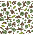 sloth yoga seamless pattern funny cartoon animals vector image