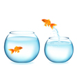 Goldfish Jumping To Other Goldfish vector image