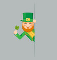looking out corner saint patrick leprechaun gnome vector image vector image