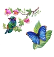 Watercolor colorful Bird and butterfly with leaves vector image vector image