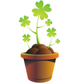 webshamrock pot vector illustr vector image vector image
