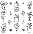 Doodle of spring flower with hand draw vector image vector image