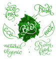 modern set of healthy vegan organic food vector image vector image