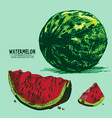 digital detailed color watermelon hand vector image vector image