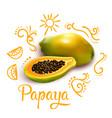 Doodles around papaya composition