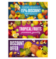 exotic fruits tropical farm market promo offer vector image vector image