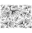 hand drawn of arame seaweed on white background vector image vector image
