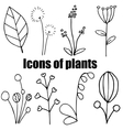 High quality original set of plants icons isolated vector image vector image