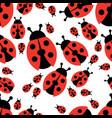 ladybird seamless pattern vector image vector image