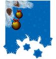 ny flake vector image