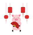 pig with hanging lantern vector image