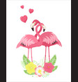 set loving couples pink flamingos vector image