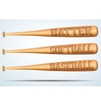 Set of Wooden Baseball bat vector image vector image