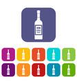 bottle of vodka icons set vector image