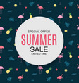 colored summer sale concept background vector image vector image