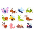 cute insects bugs creatures bee and ladybug vector image