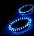 fire gas stove vector image vector image