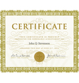 Formal Certificate Template vector image vector image