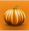 realistic pumpkin isolated on orange background vector image