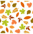 seamless pattern with autumn leaves vector image vector image
