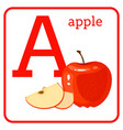 an alphabet with cute fruits letter a apple vector image vector image