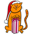 cat with christmas gift cartoon vector image vector image