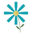 daisy flower decoration image vector image vector image