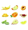 drawing slices fruit vector image vector image