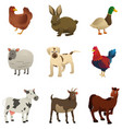 farm animal icons vector image vector image